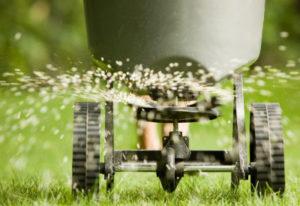 gnojenje trave