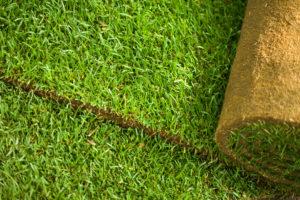 travna ruša urejanje okolice