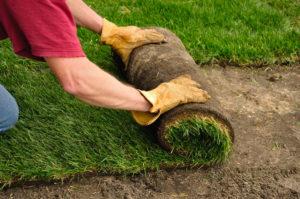 polaganje travni tepih