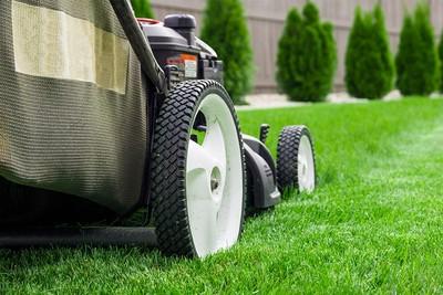 košnja in oskrba trave - cena