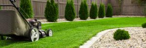 ureditev vrta oskrba trave