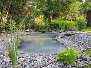urejanje ribnikov